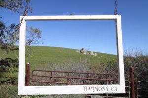 Harmony, CA