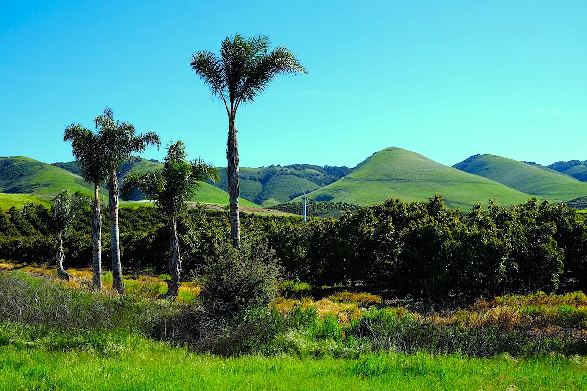 Nipomo, San Luis Obispo County