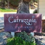 Cambria - Cutruzzola