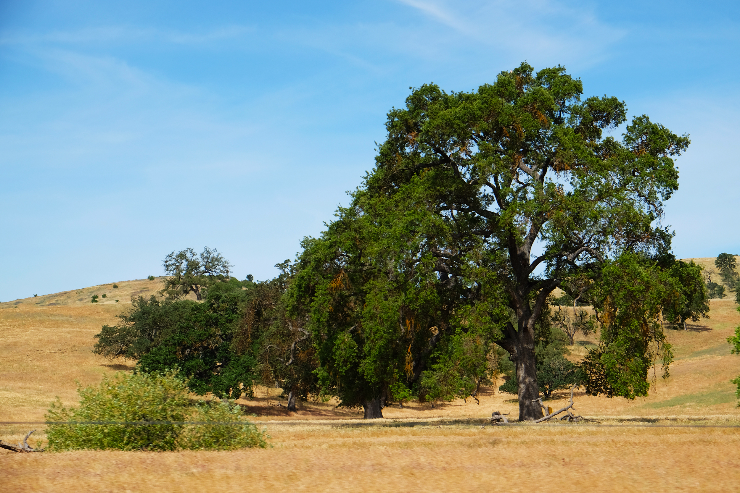 Creston, San Luis Obispo County